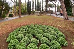 AMA-Cimiteri-Capitolini-01
