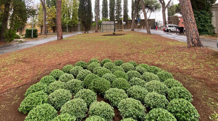 AMA Cimiteri Capitolini 01